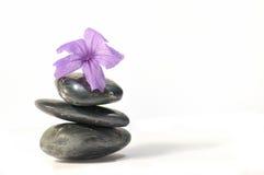 3 serii zen. obraz stock
