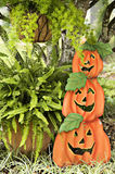 3 Stacked Pumpkins. In a garden display for halloween Royalty Free Stock Images