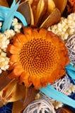 3 suchego kwiatu Zdjęcie Royalty Free