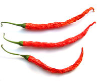 3 tajski chilis Obrazy Stock