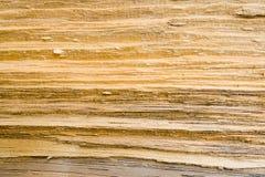 3 tekstury zbożowy drewno Obrazy Royalty Free
