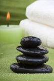 3 thermo tropiskt för grön terapi Royaltyfri Fotografi
