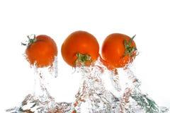 3 tomaten die uit het water springen Stock Foto's