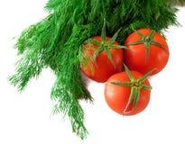 3 tomates frescos y el manojo de eneldo en blanco. Fotografía de archivo