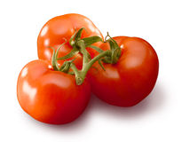 3 tomato's Royalty Free Stock Photos