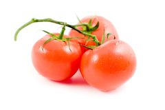 3 tomatos Stock Photography