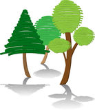 3 trees green. Three green trees with different shapes and color,  version Stock Photos