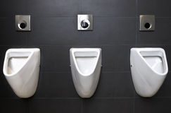 3 urinals Stock Image