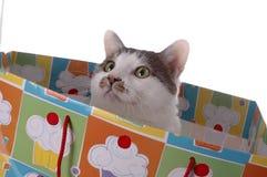 3 urodzinowa niespodzianka Obrazy Stock