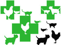 3 veterinary cross logos with cute animals. This image represents 3 different veterinary cross logos with cute animals for your design or business Stock Photo