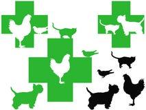 Free 3 Veterinary Cross Logos With Cute Animals Stock Photo - 20560100