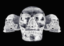 3 views of a crystal skull Stock Images