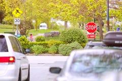 Free 3-way Stop Sign City Park Stock Photos - 146528813