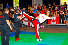 3. Weltkickboxing Meisterschaft 2011 lizenzfreies stockfoto