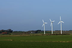3 Windmills. Three windmills in the danish country Royalty Free Stock Images