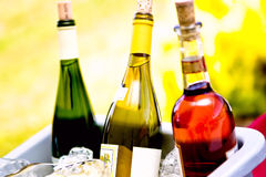 3 wine bottles. Three bottles of wine in red yellow and green Royalty Free Stock Photo