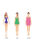3 woman body shapes, slim, chubbiness and fat Royalty Free Stock Images