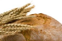 3 występować samodzielnie bochenek chleba pszenicy Obraz Stock