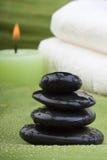 3 zielonych terapii zielonych tropikalny Fotografia Royalty Free