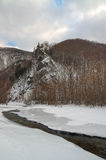 3 zima krajobrazowy drewno Zdjęcia Stock