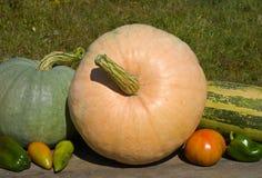 30棵蔬菜 免版税库存照片
