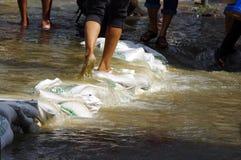 30 2011年曼谷洪水10月 免版税库存照片