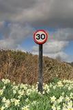 30 M/H signent dedans des jonquilles Image libre de droits