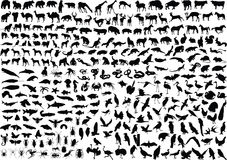 300 Animal Silhouettes Royalty Free Stock Images