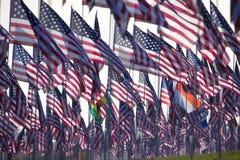 3000 bandeiras Fotografia de Stock Royalty Free