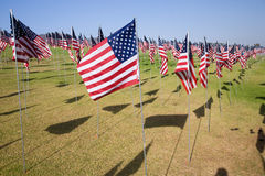 3000 bandeiras na luz do sol Imagem de Stock Royalty Free