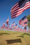 3000 bandeiras no vento Imagem de Stock