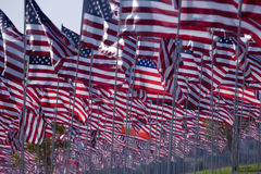 3000 flags Royalty Free Stock Photo