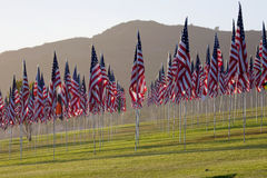 3000 flags standing still Stock Images