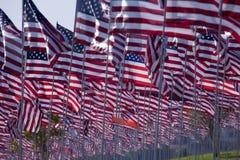 3000 vlaggen Royalty-vrije Stock Foto