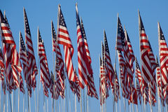3000 vlaggen tegen blauwe hemel Royalty-vrije Stock Afbeelding