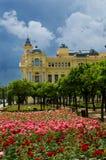 31朵大厅马拉加玫瑰城镇 免版税图库摄影