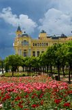 31 - rozen van Malaga stadhuis Royalty-vrije Stock Fotografie