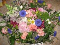 32朵排列花 库存照片