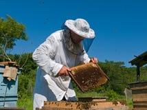 32蜂农 免版税库存照片
