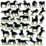 32 Horses Silhouettes Set Royalty Free Stock Image
