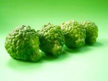 32 owoców cytrusowych Zdjęcie Stock
