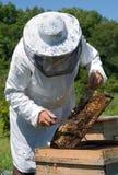 33蜂农 免版税图库摄影