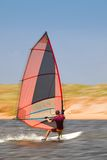 33 windsurfer Obraz Royalty Free