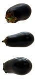 茄子三重奏 库存照片