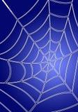 蓝色spiderweb 库存图片