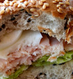 被咬住的三明治 库存照片