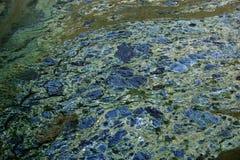 被感染的纹理水 库存照片