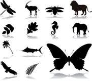 35个图标本质集 库存例证