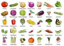 35 ícones dos vegetais Fotos de Stock