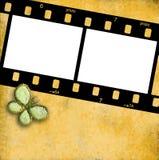 35mm Filmfeld für zwei Fotos getrennt Lizenzfreies Stockbild